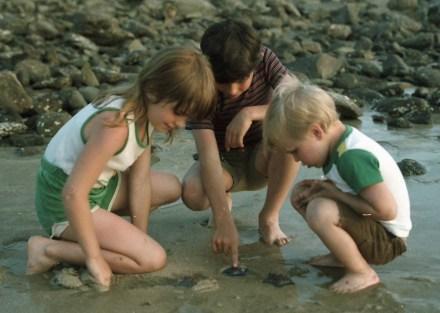 1984 June (3)
